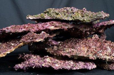 Real Reef Rock - Shelf Rock box 25 kg
