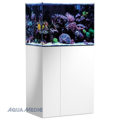 Armatus 250 - white