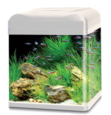 HS AQUA AQUARIUM LAGO 50 LED WIT