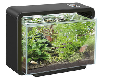 SF HOME 15 AQUARIUM ZWART