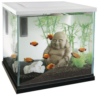 SUPERFISH ZEN 30 AQUARIUM WIT