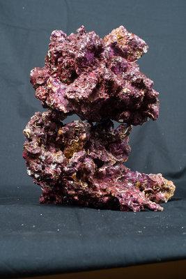 Real Reef Rock XL