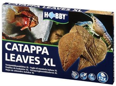 HOBBY NANO CATAPPA LEAVES XL 12 ST