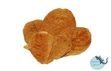 Catappa bladeren XL 10x verpakt 21-40cm